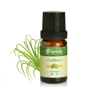 香茅 Citronella 10ml