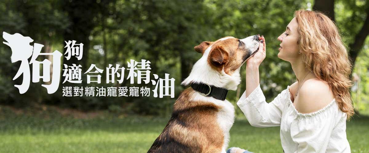 選對精油寵愛寵物-狗適合的精油.jpg